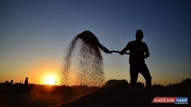 Çiftçiye 59 milyon 271 bin liralık destek ödemesi