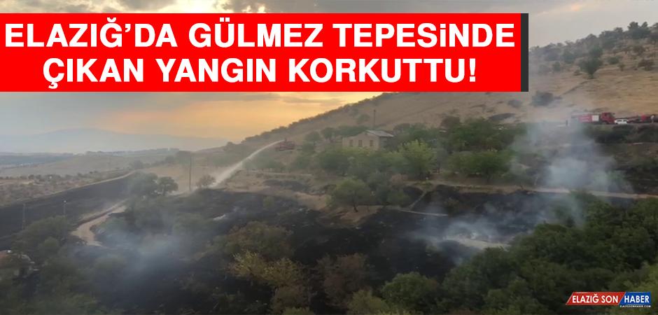 Elazığ'da Gülmez Tepesinde Çıkan Yangın Korkuttu