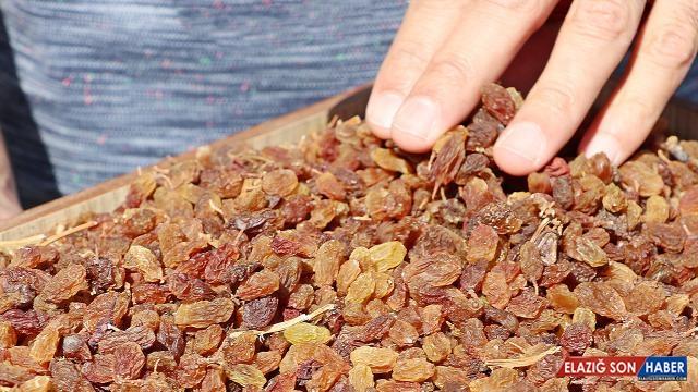 TMO çekirdeksiz kuru üzüm alımına Cuma günü başlıyor