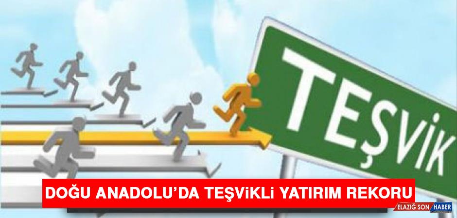 Doğu Anadolu'da Teşvikli Yatırım Rekoru