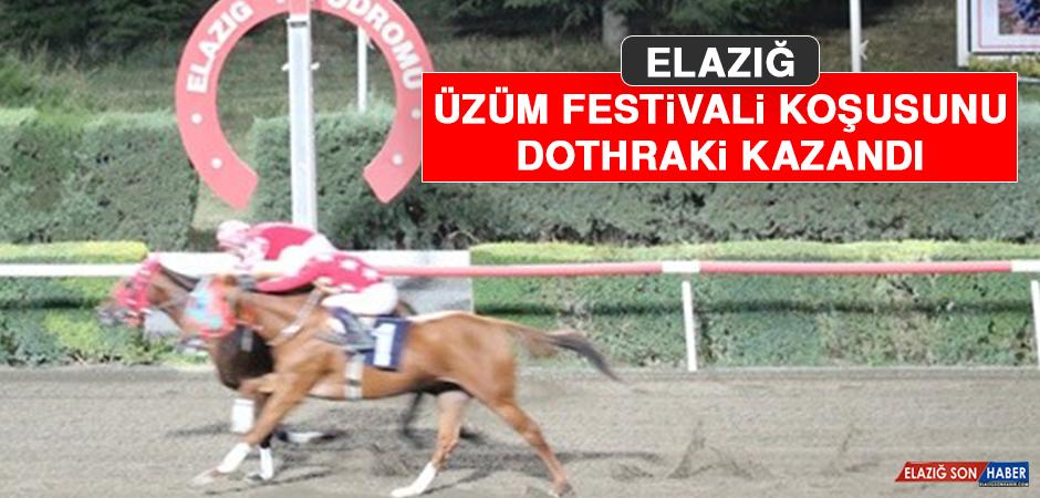 Elazığ Üzüm Festivali Koşusunu Dothraki Kazandı