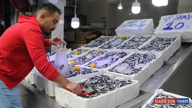Karadeniz'de hamsi bolluğu: Fiyatı 10 liraya düştü