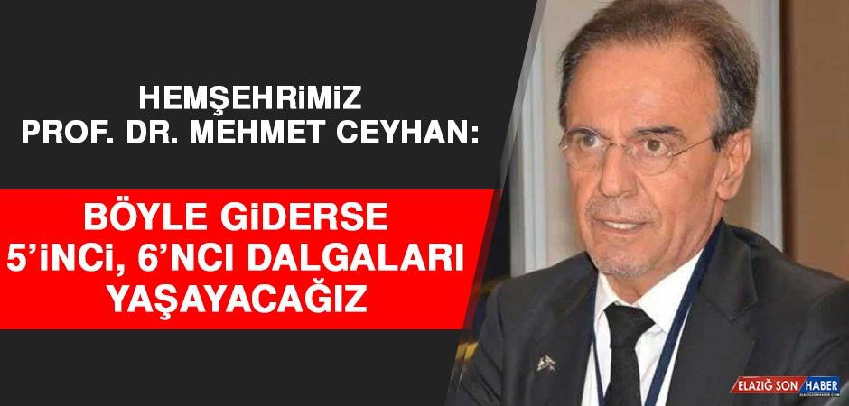 Prof. Dr. Mehmet Ceyhan: Böyle Giderse 5'inci, 6'ncı Dalgaları Yaşayacağız