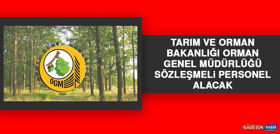 Tarım ve Orman Bakanlığı Orman Genel Müdürlüğü Sözleşmeli Personel Alacak