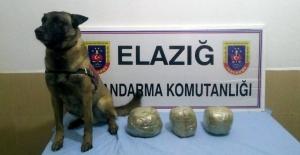 Jandarma Toz Esrar Ele Geçirdi