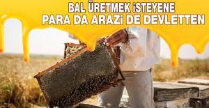 BAL ÜRETMEK İSTEYENE PARA DA ARAZİ DE DEVLETTEN
