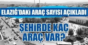 2017 Yılı Sonu İtibariyle Elazığ'da Kaç Araç Var?