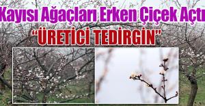 """""""BU SENE KAYISININ NE OLACAĞI BELLİ DEĞİL"""""""