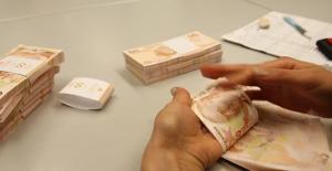 Vergi Kaçıranları İhbar Edenlere 12,8 milyon Lira Ödendi