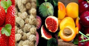 Bahara Özel 5 Sağlıklı Meyve
