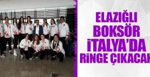 Gizem Özer, Avrupa Boks Şampiyonasında Mücadele Edecek
