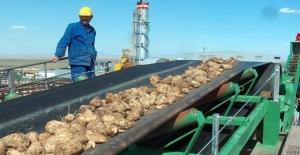 Afyon Şeker Fabrikası'nın Satışı Onaylandı