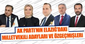 AK Partinin Elazığdaki Milletvekili...