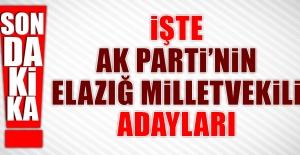 İşte AK Partinin Elazığdaki...
