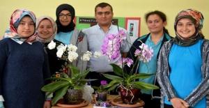 Kütahya'da Lise Öğrencileri Cep Telefonundan Çiçek Sulayan Sistem Geliştirdi