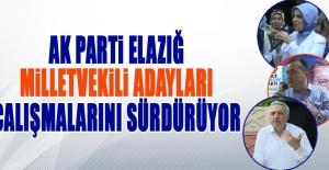 Seçime 1 Gün Kala AK Parti Adayları Çalışmalarını Sürdürüyor