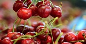 Türkiye'nin Meyve İhracatı İkiye Katlandı