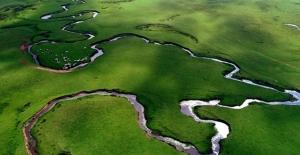 Yeşil Doğası Ve İlginç Menderesleriyle Perşembe Yaylası Ziyaretçilerini Ağırlıyor