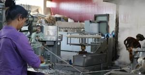 Diyarbakır'da İpek Böcekçiliği Yeniden Canlandı