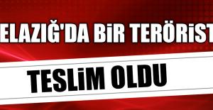 ELAZIĞ#039;DA BİR TERÖRİST TESLİM...