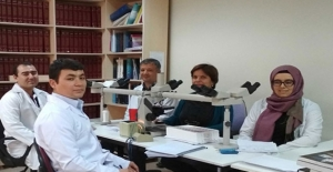 İslam İşbirliği Teşkilatı Ülkelerine Sağlıkta Eğitim Desteği