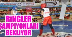 Kick Boks Türkiye Şampiyonası Elazığ'da Yapılacak