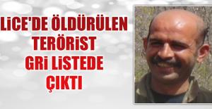 Öldürülen Terörist Gri Listede Çıktı