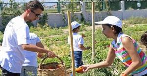 Kayseri Belediyesi'nden Lösemili Çocuklara 'Organik' Destek
