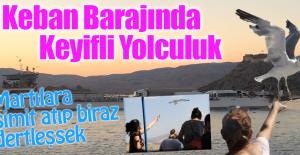Keban Barajında Martılarla Yolculuk Keyfi