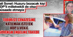 Vali Sonel: Huzuru bozacak kişi HDP'li milletvekili de olsa müsaade etmeyiz