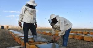 Genç çiftçilerin yüzü devlet desteğiyle gülüyor