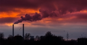 İklim Değişikliği Canlı Türlerini Tehdit Ediyor