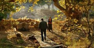 quot;Ahlat Ağacıquot; Londra Film...
