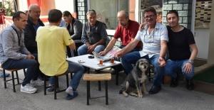 Trabzon'da Yenimahalle muhtarlığı 61 yıldır aynı aileye emanet