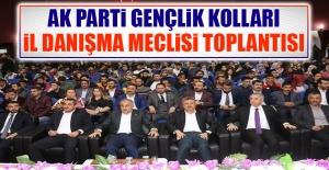 AK Parti Gençlik Kolları İl Danışma Meclisi Toplantısı Düzenlendi