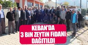 Keban'da 3 Bin Zeytin Fidanı Dağıtıldı