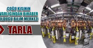 Çoğu Kişinin Varlığından Bihaber Olduğu Türkiye'nin Göbeğindeki Bilim Merkezi: TARLA