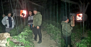 Serada Don Nöbeti! Çiftçiler, Bütün Gece Sobalara Odun Taşıyor