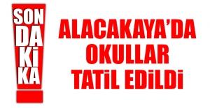 Alacakaya'da Okullar Tatil Edildi