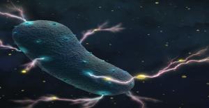 Bilim İnsanları, Mikroplardan Elektrik Üretilebileceğini Keşfetti