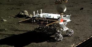 Çin'in Ay'a Gönderdiği Pamuk Tohumları Filizlendi