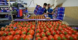 Ege'nin tarım ihracatı 5 milyar doları geçti