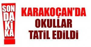 KARAKOÇAN'DA OKULLAR TATİL EDİLDİ