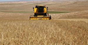 Bakan'dan Çiftçilere Enerji Müjdesi: Tarımsal Faaliyetler Tarifesi, Bir Aya Kadar Başlayacak