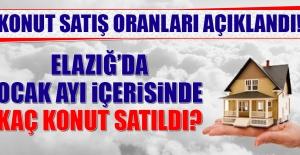 Elazığ'da Ocak Ayı İçerisinde Kaç Konut Satıldı?