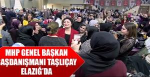 MHP Genel Başkan Başdanışmanı Taşlıçay Elazığ'da