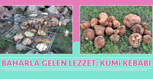 Baharla Gelen Lezzet: Kumi Kebabı