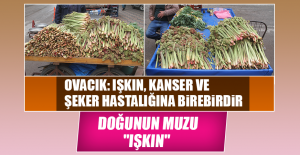 "DOĞUNUN MUZU ""IŞKIN"""