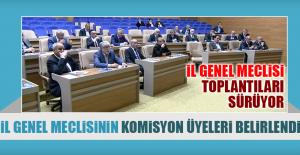İl Genel Meclisinin Komisyon Üyeleri Belirlendi