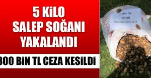 300 BİN TL CEZA KESİLDİ!